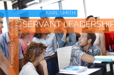 Servant Leadership Experiments in Ways of Working Book